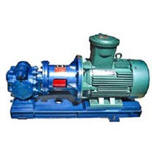 沧州保温齿轮泵工厂 创新服务 沧州海德尔泵业供应
