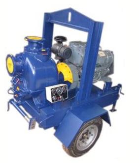 四川卧式排污泵排污泵 创新服务 沧州海德尔泵业供应