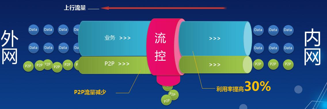 山东上网行为管理代理商 上海雪莱信息科技供应