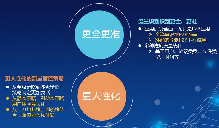 安徽华为上网行为管理哪家好 上海雪莱信息科技供应