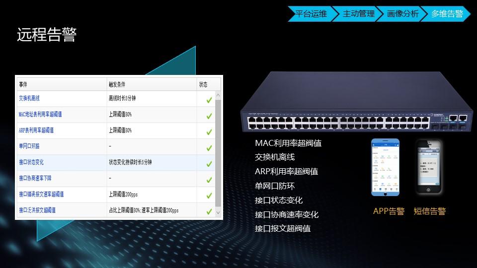 湖南华为交换机品牌 上海雪莱信息科技供应
