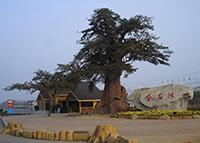 鲤城区假山喷水池批发 诚信为本「福建宏达奇装饰工程供应」