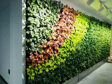 上海酒店立体绿化是什么,立体绿化