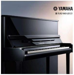 兴化青少年钢琴培训 姜堰区爱乐音乐培训供应