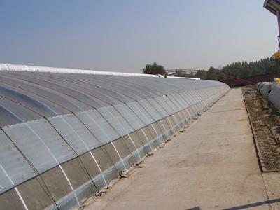小型温室大棚厂家供应,温室大棚