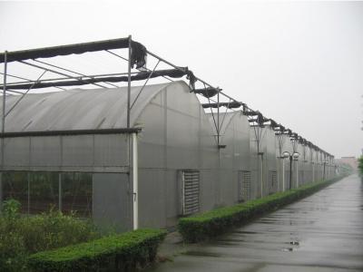 松江區口碑好溫室大棚產品介紹,溫室大棚