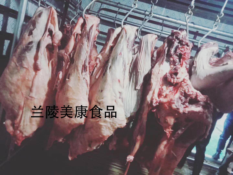石家庄带皮驴排销售厂家 创造辉煌「兰陵县美康食品供应」