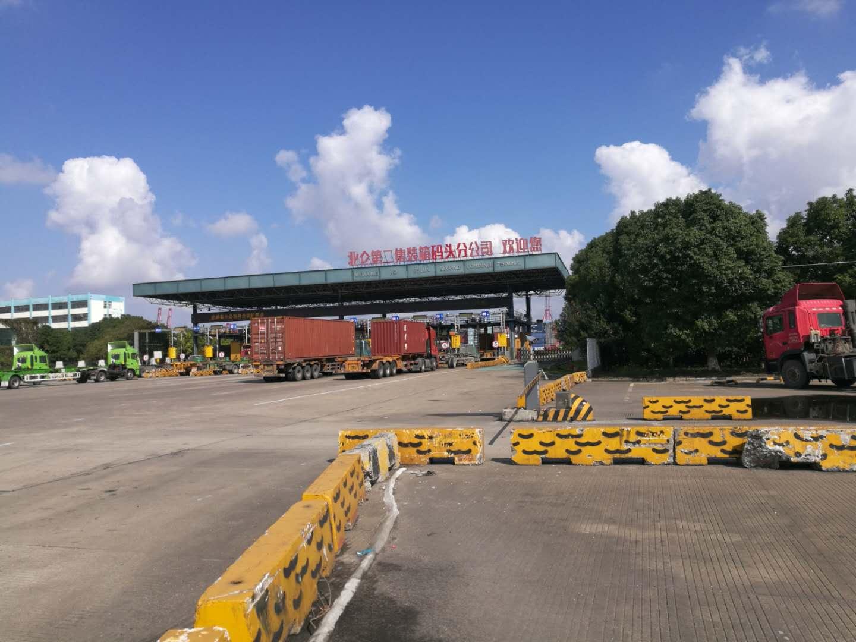 阿拉斯加木瓜進口清關價位 貼心服務「寧波美時國際貨運代理供應」