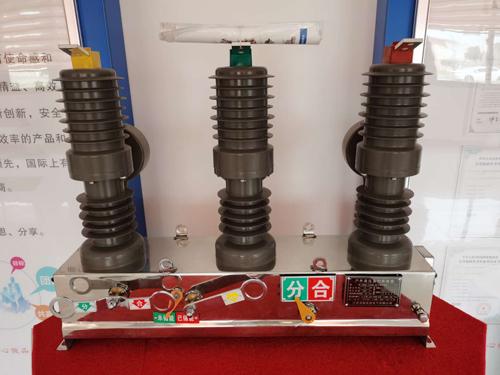 温州真空断路器选型 欢迎来电 江西百新电瓷电气供应