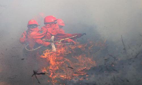新疆高分子凝胶水系森林灭火装置,森林灭火