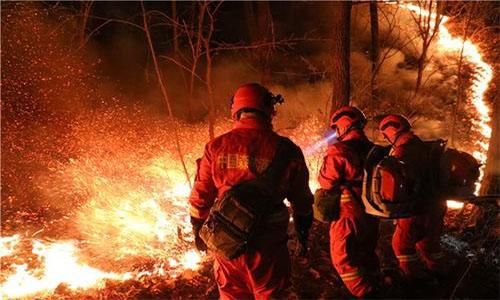 中国森林灭火服务 欢迎咨询「四川峰邦消防科技供应」