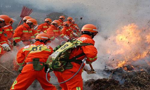 广西降温森林灭火器,森林灭火