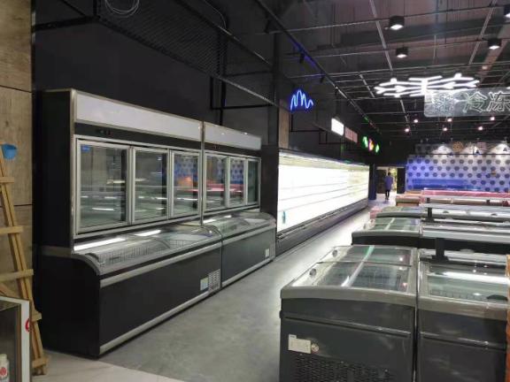 鲜肉冰柜定制 信息推荐「上海冰焰制冷设备供应」