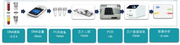 杭州标准数字PCR定量检测 欢迎来电 上海朝瑞生物科技供应