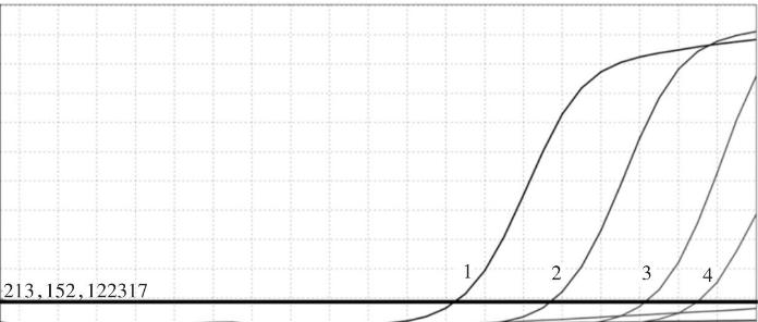 天津食品安全荧光定量PCR分析服务 有口皆碑 上海朝瑞生物科技供应
