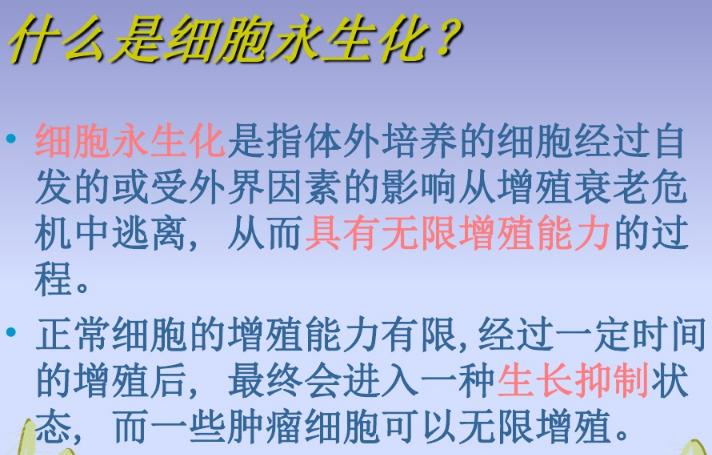 江苏HPV法细胞永生化技术服务 欢迎咨询 上海朝瑞生物科技供应