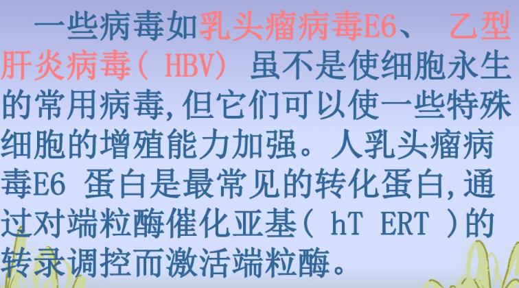 上海细胞永生化哪家专业 来电咨询 上海朝瑞生物科技供应