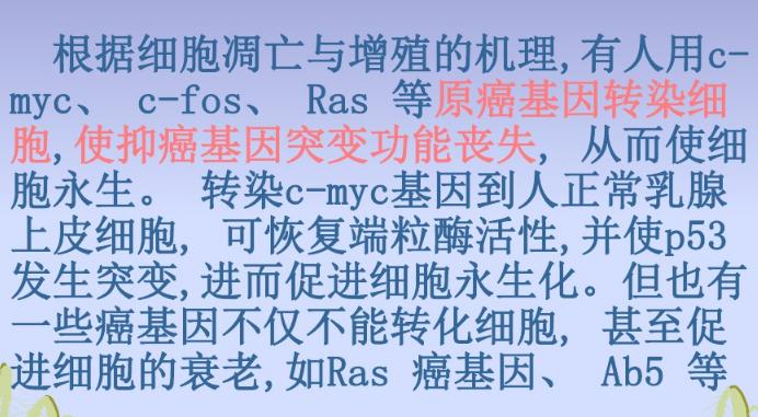 江苏细胞永生化 欢迎来电 上海朝瑞生物科技供应