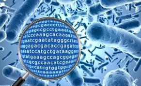 云南各类不明原因病原 分析服务 欢迎咨询 上海朝瑞生物科技供应