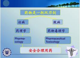 江苏遗传毒理学安全性评价检测服务 来电咨询 上海朝瑞生物科技供应