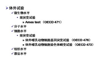 天津科技企业科研课题项目技术服务 欢迎咨询 上海朝瑞生物科技供应