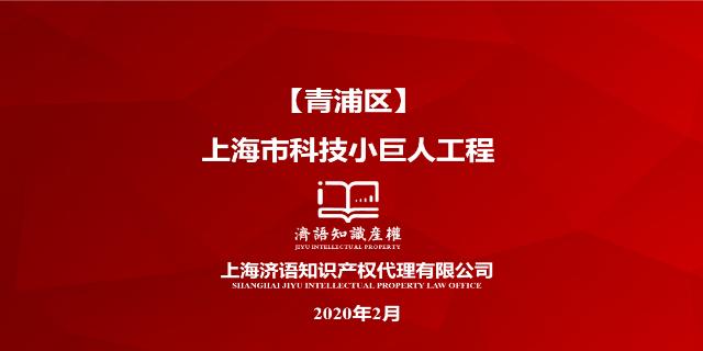 嘉定申报上海市科技小巨人工程立项 有口皆碑「上海济语知识产权代理供应」