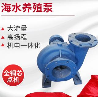 杭州污水泵电机