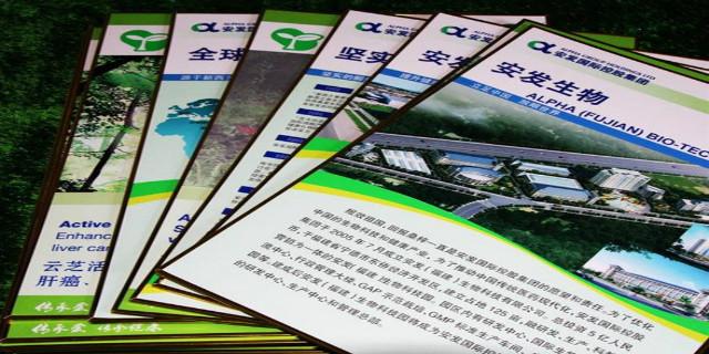 上海样本制作,制作