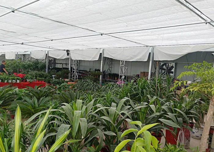 昆山商场植物租赁 诚信经营「上海瑞合绿化工程供应」