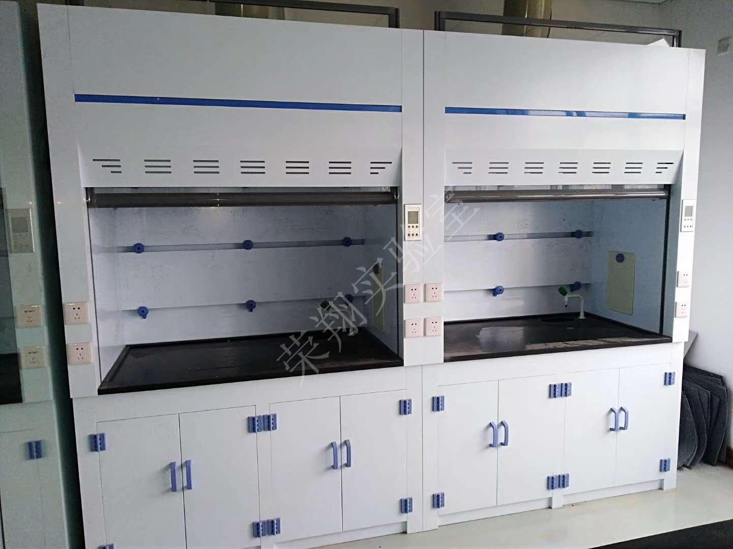 上海可移动通风柜加工 值得信赖 江苏荣翔实验室设备供应
