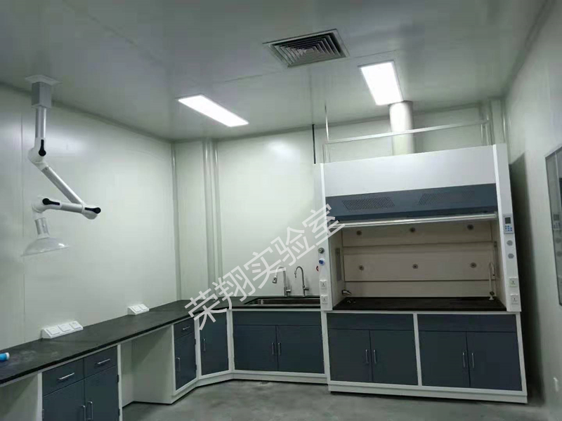 浙江通风柜定做 诚信经营 江苏荣翔实验室设备供应