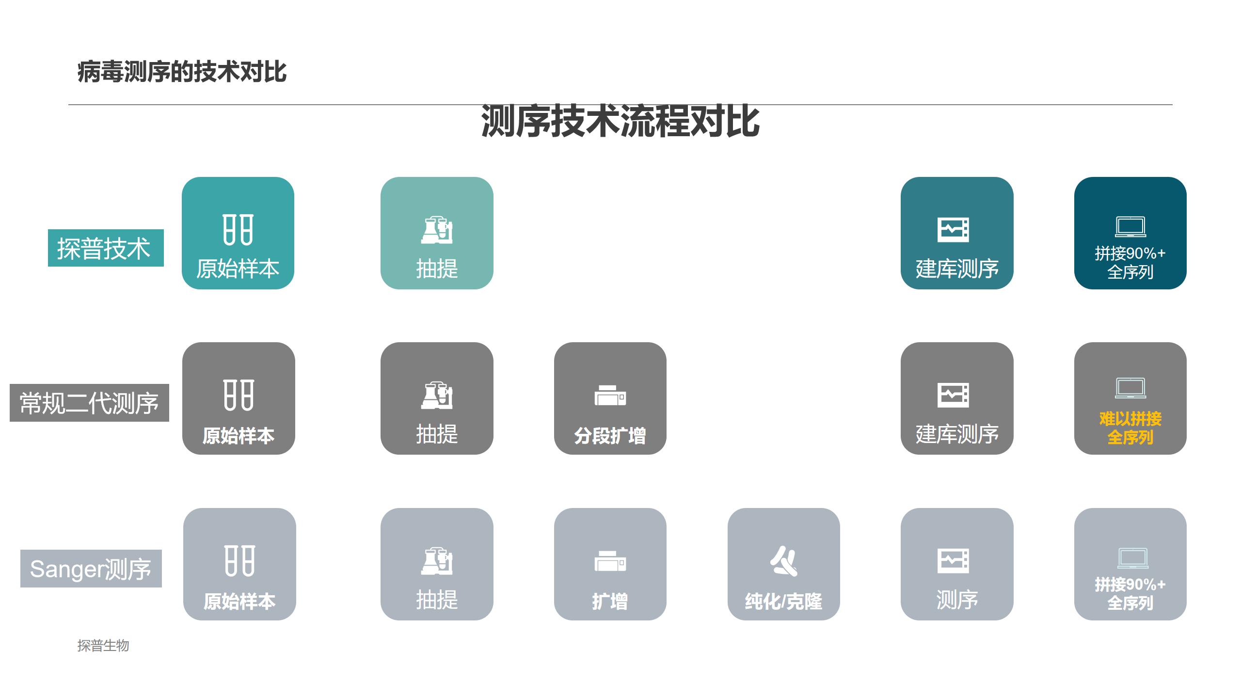 知名对病毒的全基因组进行测序常用解决方案 创新服务「上海探普生物科技供应」