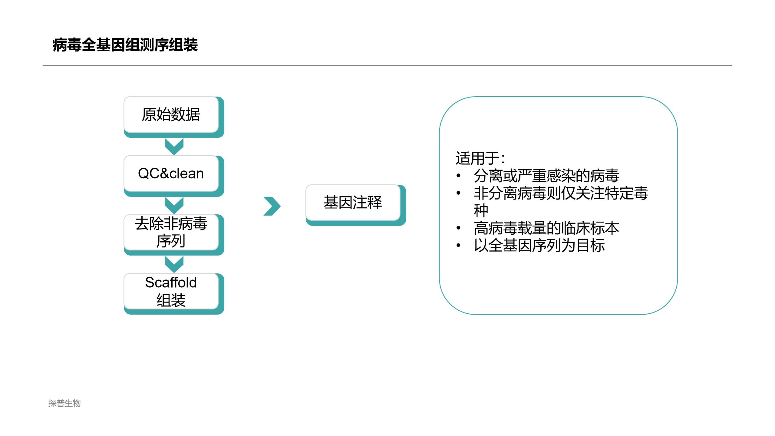 浙江对病毒的全基因组进行测序全序列 欢迎来电「上海探普生物科技供应」