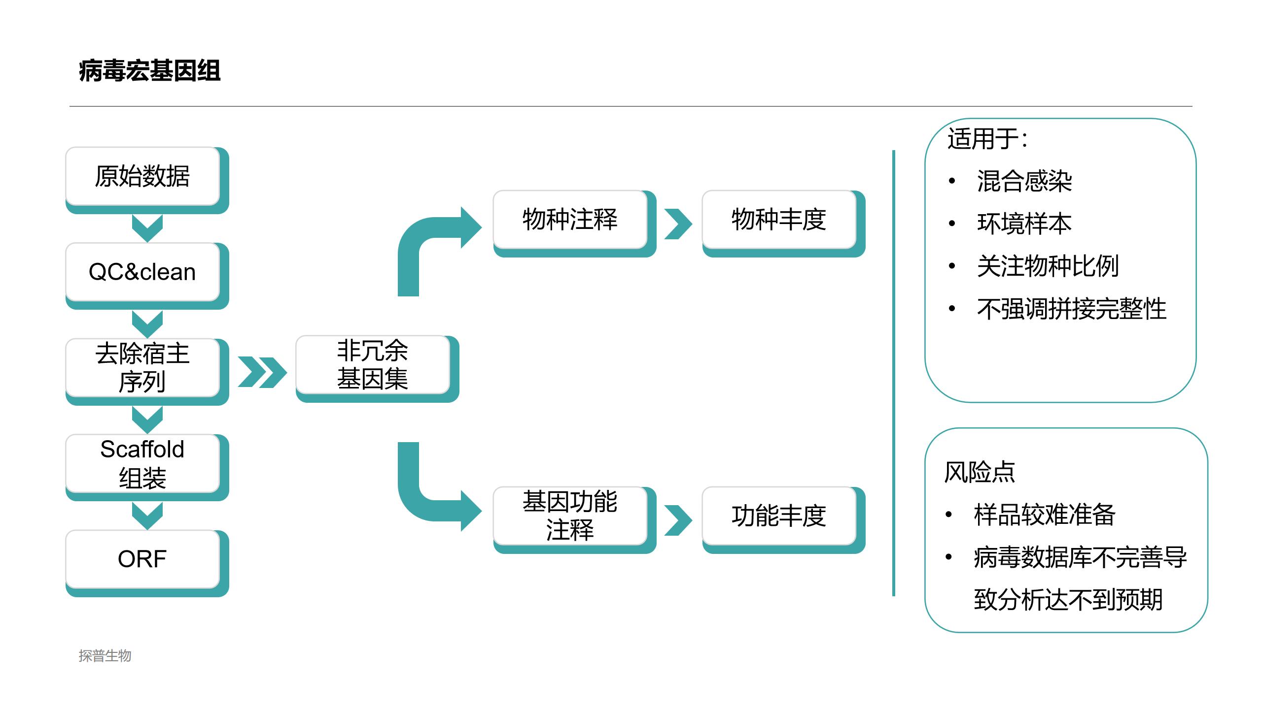 大庆优质对样本进行宏病毒组测序价格合理 欢迎来电「上海探普生物科技供应」
