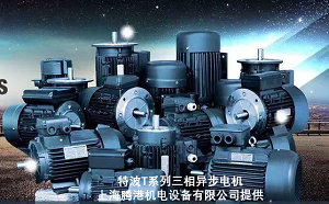 TECHTOP电机品质保证交期稳定-上海腾港机电设备有限公司