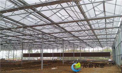 徐州优质薄膜温室大棚生产基地 欢迎咨询「拓新供」