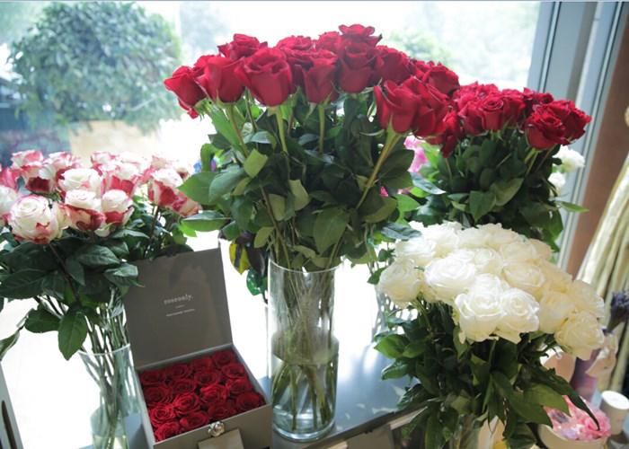 云南优质玫瑰花批发厂家的地址 云南安学鲜花供应