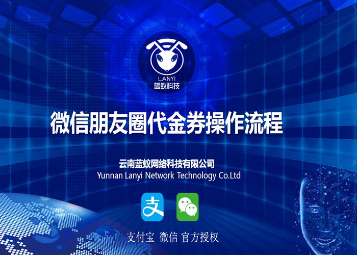 大理朋友圈廣告推廣方案 誠信經營 云南藍蟻網絡科技供應