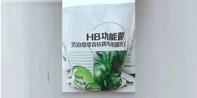 山东生物功能菌销售 信息推荐 山东得和明兴贸易供应