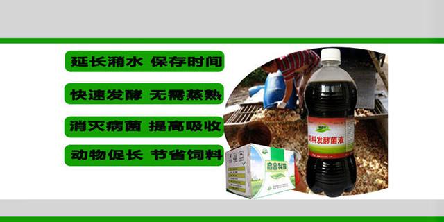 饲料发酵菌有哪些 来电咨询 山东得和明兴贸易供应