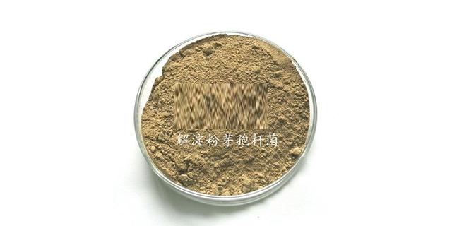 江苏解淀粉芽孢杆菌 和谐共赢 山东得和明兴贸易供应