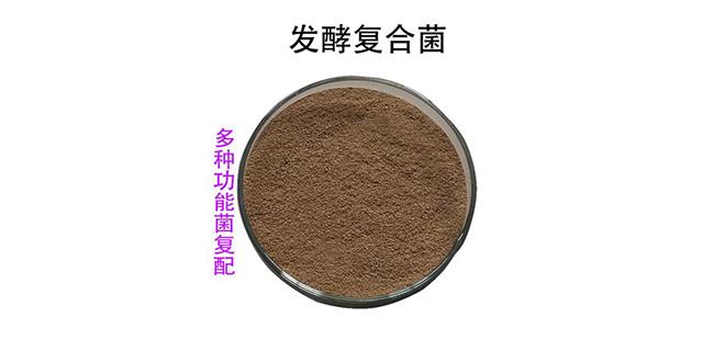 广东jt复合菌剂 来电咨询 山东得和明兴贸易供应