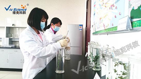 四川浸制标本生产厂家 新乡市维克科教仪器供应