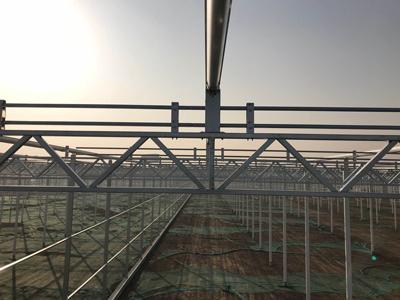 福建日光温室项目施工 有口皆碑 伟铭阳光温室工程供应
