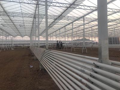 泉州pc板温室大棚建设 真诚推荐 伟铭阳光温室工程供应