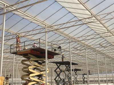 漳州日光温室大棚建设厂家 真诚推荐 伟铭阳光温室工程供应