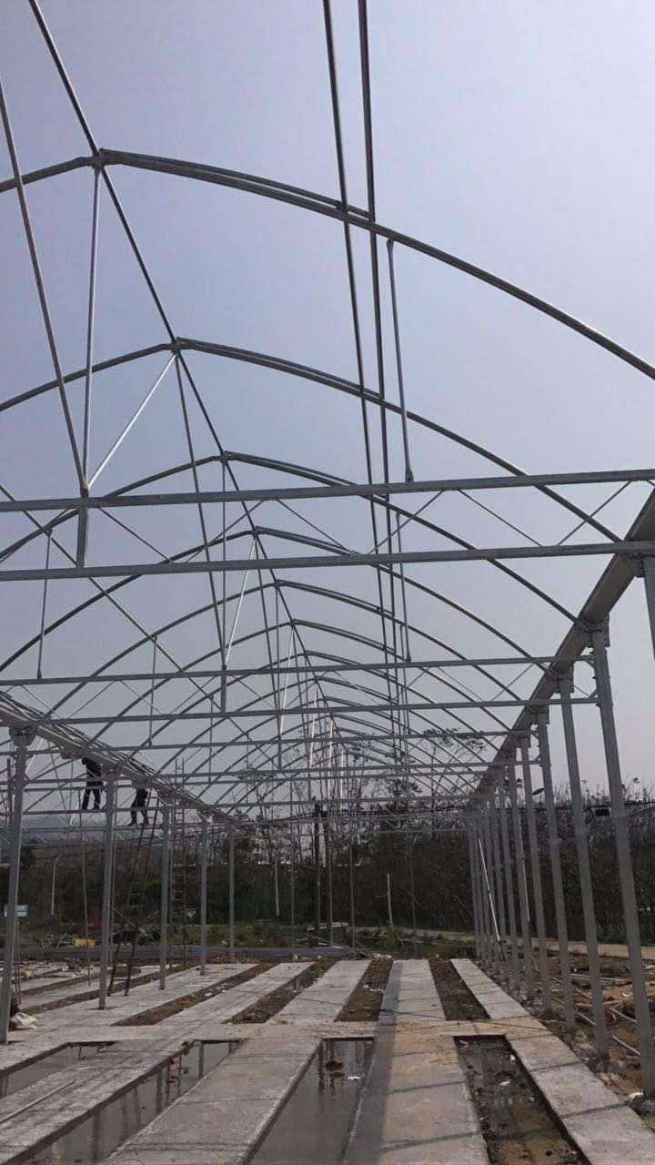 福建温室大棚改造 值得信赖 伟铭阳光温室工程供应