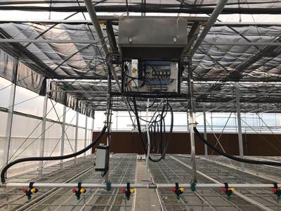 泉州日光温室工程 欢迎来电 伟铭阳光温室工程供应