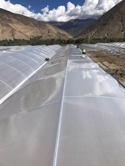 泉州生态温室工程施工 欢迎咨询 伟铭阳光温室工程供应
