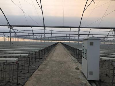 泉州pc板温室建设